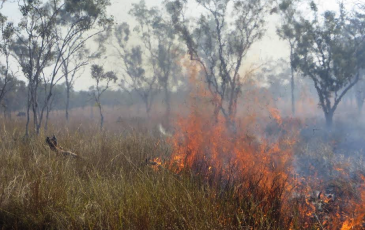 australia prescribed fire by Scott Stephens